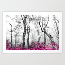 Princess Pink Forest Garden Art Print