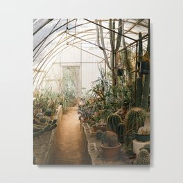 Desert Cactus and Succulent Garden, Palm Springs Metal Print