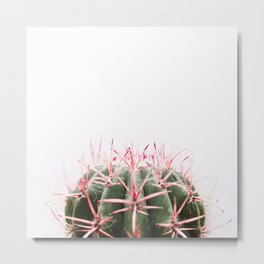 cactus red Metal Print