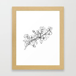Apple Blossoms, A Continuous Line Drawing Framed Art Print
