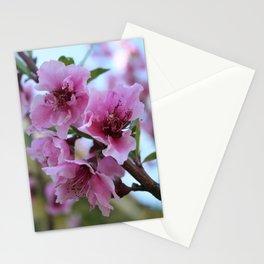 Peach Tree Blossom Close Up Stationery Cards