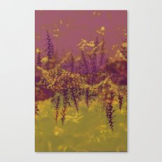 Island Floral Canvas Print