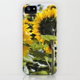 Sunflower Vol.6 iPhone Case