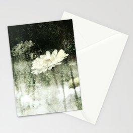 Daisy Love b&w, photography 2009 Stationery Cards