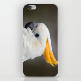 Sulfer crested cockatoo iPhone Skin