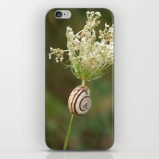 summersnail iPhone & iPod Skin