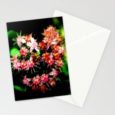 Cacti (Cactaceae) Stationery Cards