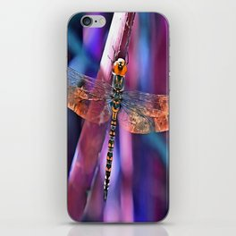Dragonfly In Orange and Blue iPhone Skin