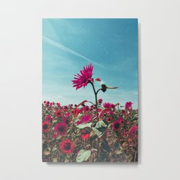Pink Sunflowers Metal Print