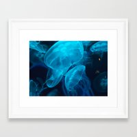 jelly fish Framed Art Prints featuring Jelly Fish by Robert Payton
