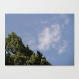 Two Levels of Earth Canvas Print
