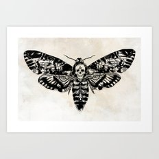 Death's-head Hawkmoth Art Print