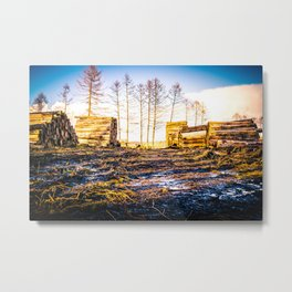 Poltery Site (Wood Storage Area) After Storm Victoria Möhne Forest bright Metal Print
