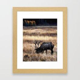 Meadows Of Horseshoe Park Framed Art Print