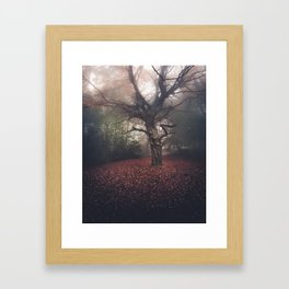 Gentle November Framed Art Print