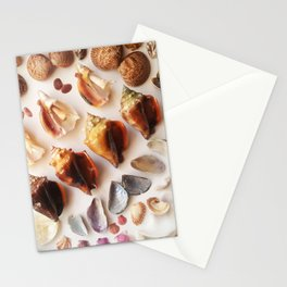 Cockles & Conch Stationery Cards