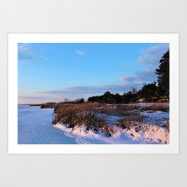 Snow Grass Art Print