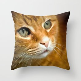 Adorable Ginger Tabby Cat Posing Throw Pillow