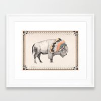 bison Framed Art Prints featuring White Bison by Sandra Dieckmann