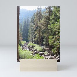 Rocky Riverbed Mini Art Print