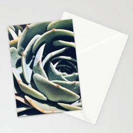 Dry garden 1 Stationery Cards