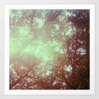 up in the trees - 600 one-step - vintage photography - sunlight - polaroid print Art Print