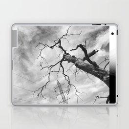 096 | bastrop state park Laptop & iPad Skin