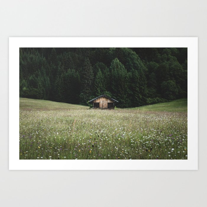 Alpine symmetry Art Print