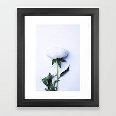 White Peony - Antique Flower Framed Art Print
