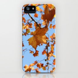 Maple Leaves in Fall and the Sky Photography iPhone Case