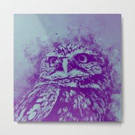 owl portrait 5 wspb Metal Print