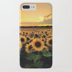Sunflower field iPhone 8 Plus Slim Case
