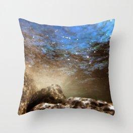 Aqua 15 Throw Pillow