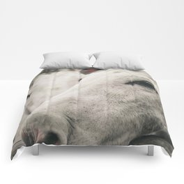 Wildwood Comforters