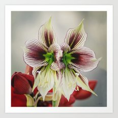 Twin Lilies Art Print