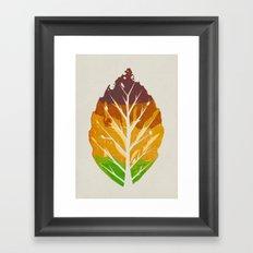 Leaf Cycle Framed Art Print