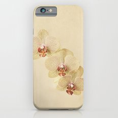 Orchids iPhone 6s Slim Case