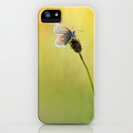 I'd like to sit here with you .... iPhone Case