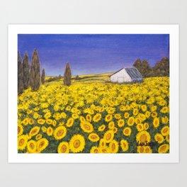 Sunfower Field Art Print