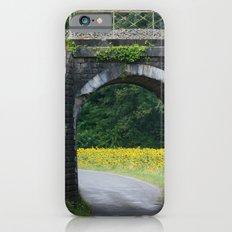 Sunflower Heaven iPhone 6s Slim Case