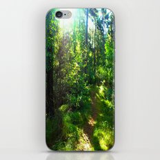 Sunshine Forest iPhone & iPod Skin
