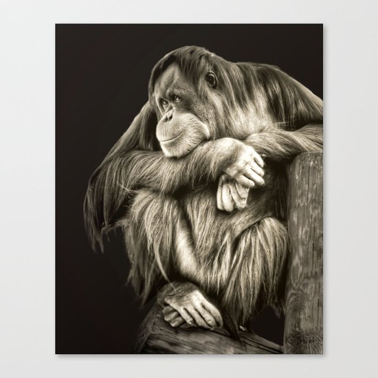 Eye Contact Canvas Print