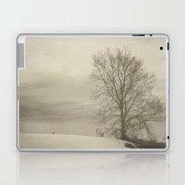 Winter Americana III Laptop & iPad Skin