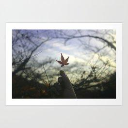Kyoto Maple Art Print