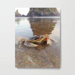 Mr.Crab at Haystack Rock #2 Metal Print