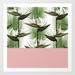 Strelitzia Tropical Rose Art Print