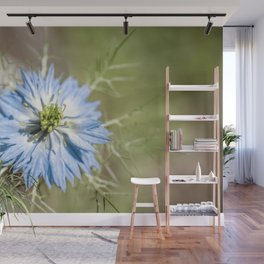 Blue flower close up Nigella love in the mist Wall Mural