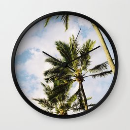 Palm tree in Cairns Wall Clock