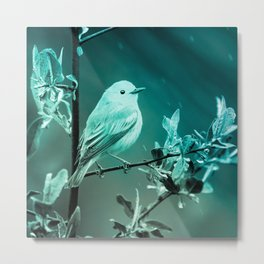 canary bird turquoise tinted aesthetic wildlife art altered photography Metal Print