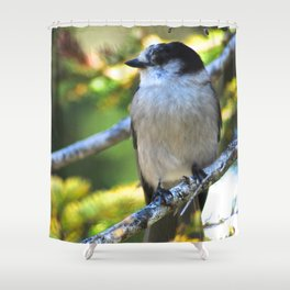 Gray is the new black! Shower Curtain